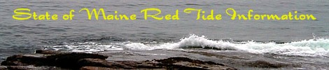 Click for Ted Tide Info