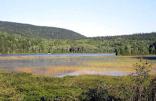 Seal Cove Pond